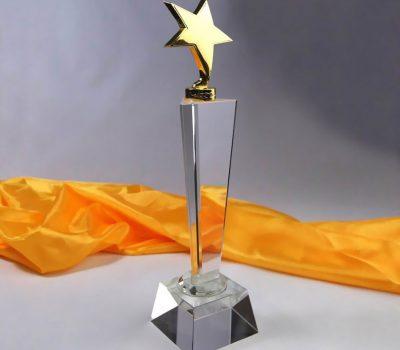 Cúp pha lê ngôi sao